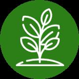 Agriculture Carbon Programme